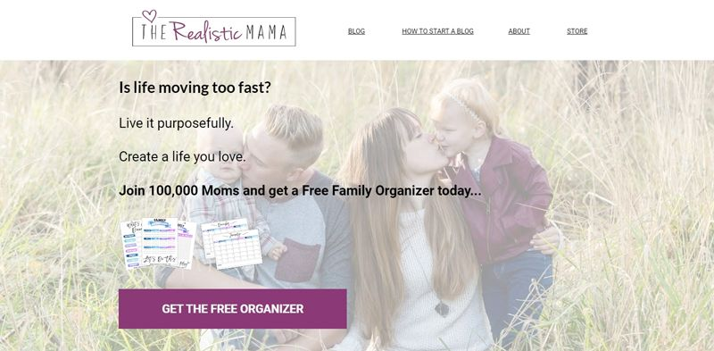the realistic mama blog
